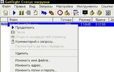 Скриншот 1 из 1 программы Русификатор GetRight