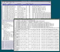 Скриншот 1 из 1 программы Wireshark