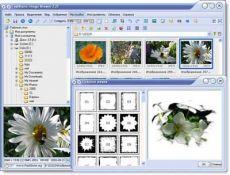 Скриншот 1 из 1 программы FastStone Image Viewer RU