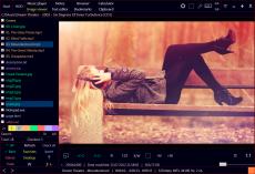 Скриншот 6 из 8 программы Ubiquitous Player