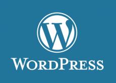 Скриншот 1 из 1 программы WordPress