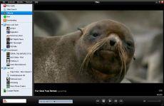 Скриншот 1 из 1 программы Miro