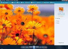 Скриншот 1 из 1 программы Windows Live Photo Gallery 2008