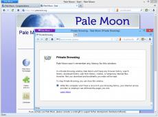 Скриншот 2 из 4 программы Pale Moon