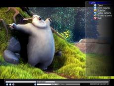 Скриншот 1 из 1 программы JuceVLC