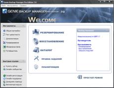 Скриншот 1 из 1 программы Русификатор Genie Backup Manager