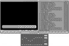 Скриншот 1 из 1 программы Zoom Player Max