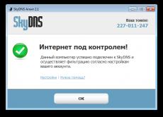 Скриншот 1 из 2 программы Интернет-фильтр SkyDNS