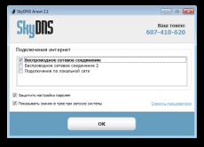 Скриншот 2 из 2 программы Интернет-фильтр SkyDNS