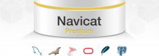 Скриншот 1 из 1 программы Navicat