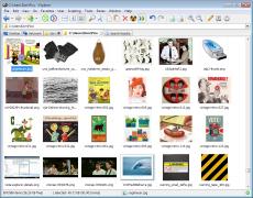 Скриншот 2 из 11 программы XYplorer